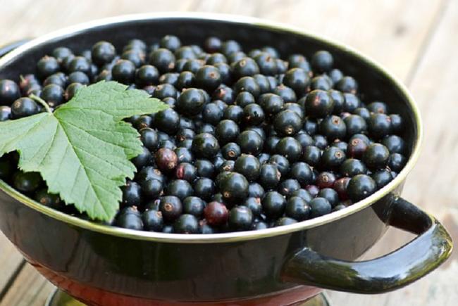 Черная смородина - рецепт варенья в домашних условиях - заготовки на зиму