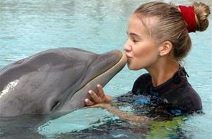 Дельфинотерапия - отзывы о процедуре, видео