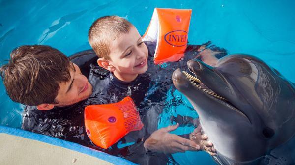 Дельфинотерапия для детей и взрослых