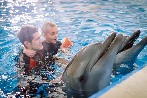 Отзывы о дельфинотерапии