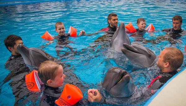 Групповые сеансы дельфинтерапии
