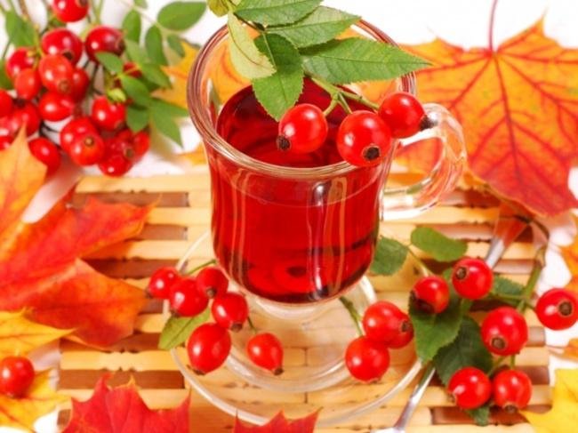 Настойка шиповника - полезные свойства и противопоказания ягод, польза и вред шиповника